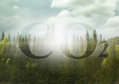 CO2-Bepreisung nach (BEHG)